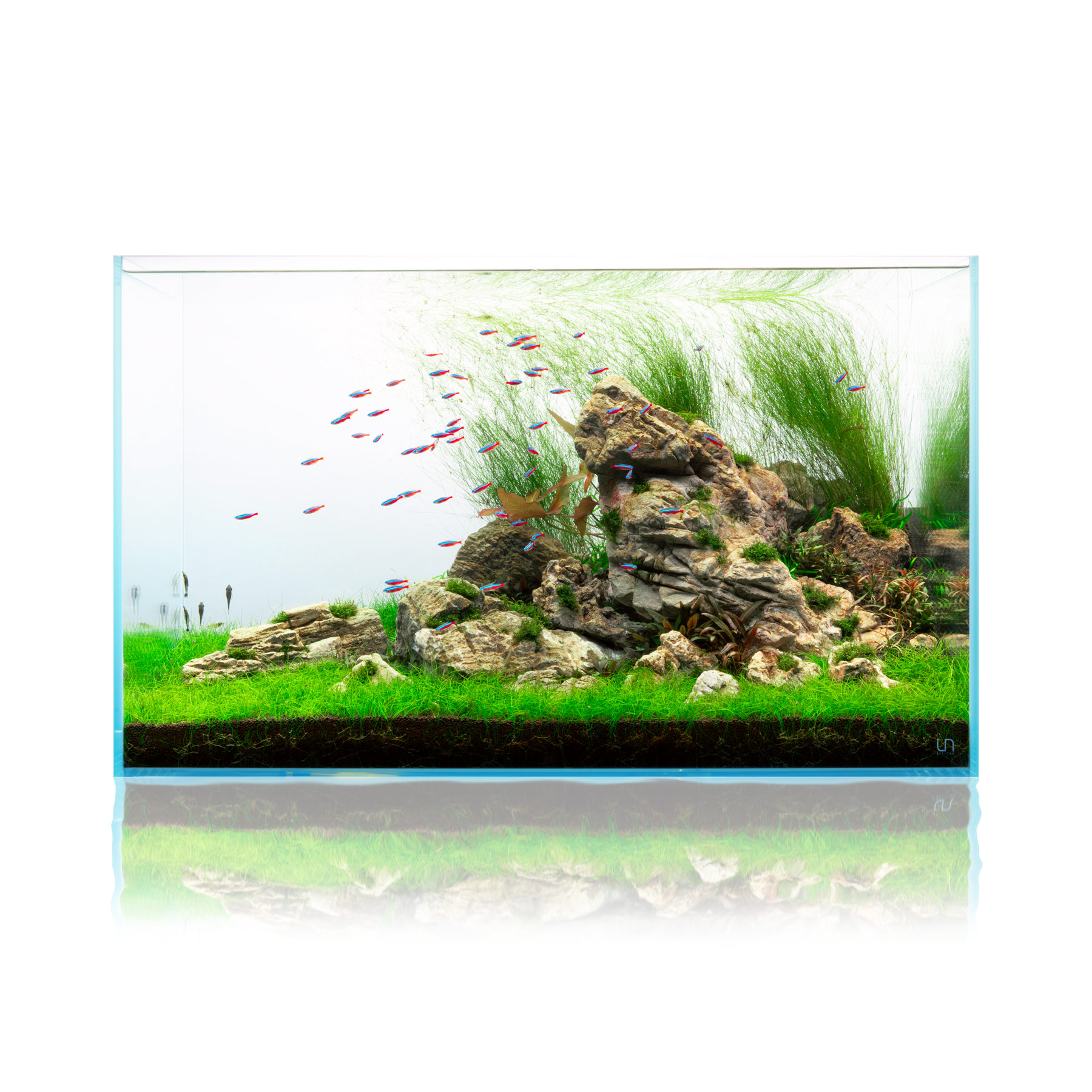 Elephant Skin Stone Popular Planted Aquarium Hardscape for Aquascaping
